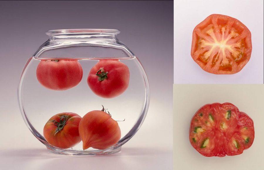 Floating tomato